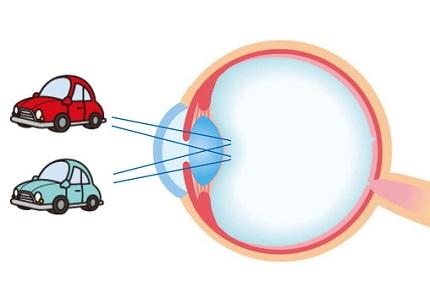 車と目のしくみのイラスト